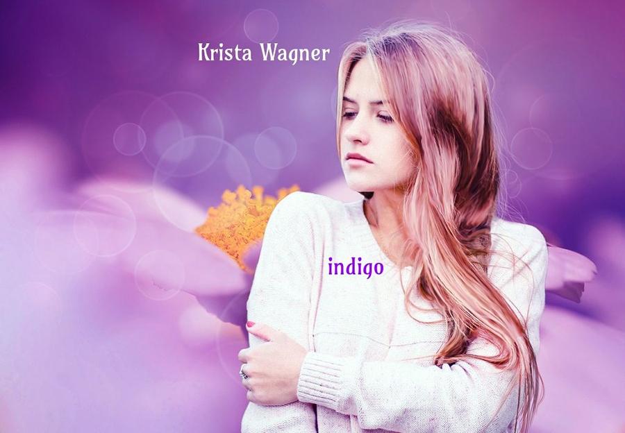indigo book cover-2